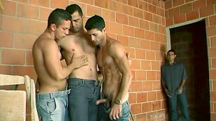Andre, Patrick & Gabriel